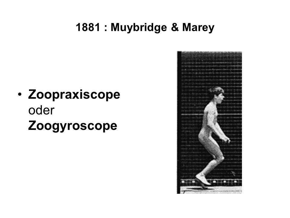 1881 : Muybridge & Marey Zoopraxiscope oder Zoogyroscope