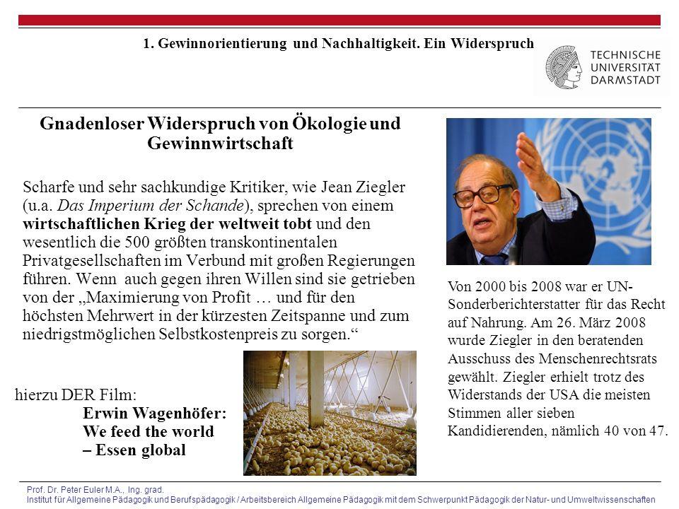Prof. Dr. Peter Euler M.A., Ing. grad.