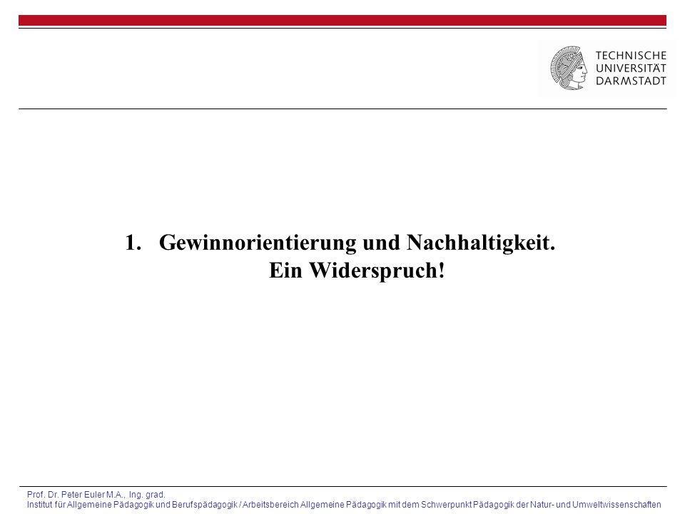 Prof.Dr. Peter Euler M.A., Ing. grad.