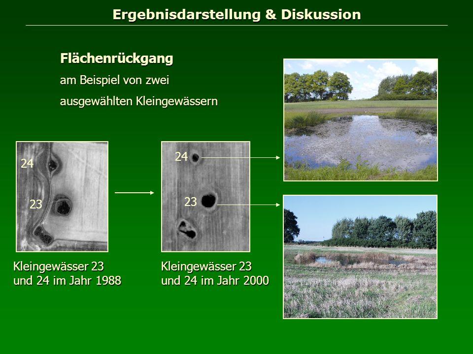 Ergebnisdarstellung & Diskussion Flächenrückgang am Beispiel von zwei ausgewählten Kleingewässern Kleingewässer 23 und 24 im Jahr 1988 24 23 Kleingewä