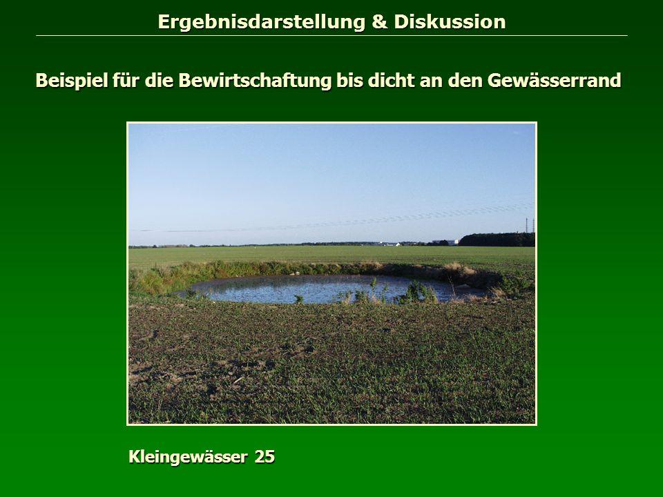 Ergebnisdarstellung & Diskussion Beispiel für die Bewirtschaftung bis dicht an den Gewässerrand Kleingewässer 25