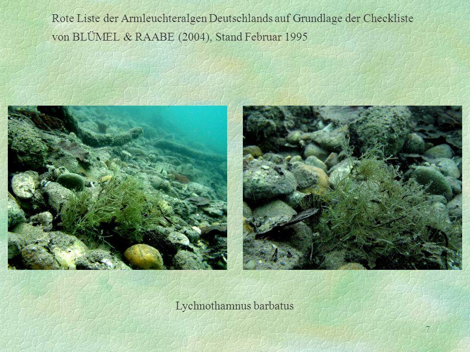 7 Rote Liste der Armleuchteralgen Deutschlands auf Grundlage der Checkliste von BLÜMEL & RAABE (2004), Stand Februar 1995 Lychnothamnus barbatus