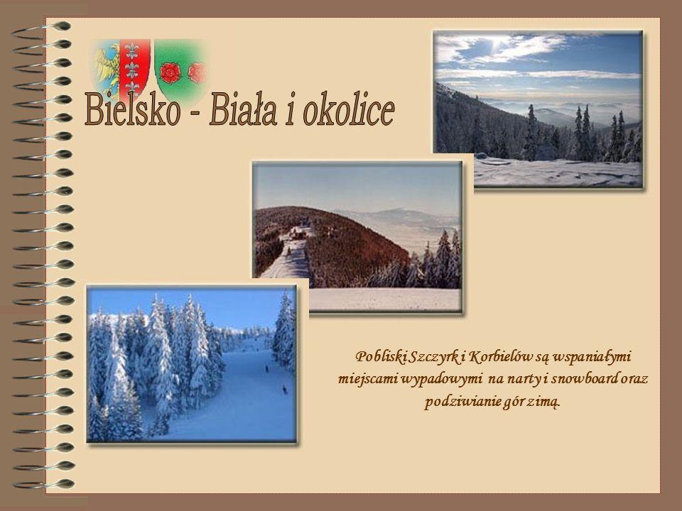 www.kopernik.neostrada.pl Qui si possono trovare informazioni sul liceo.
