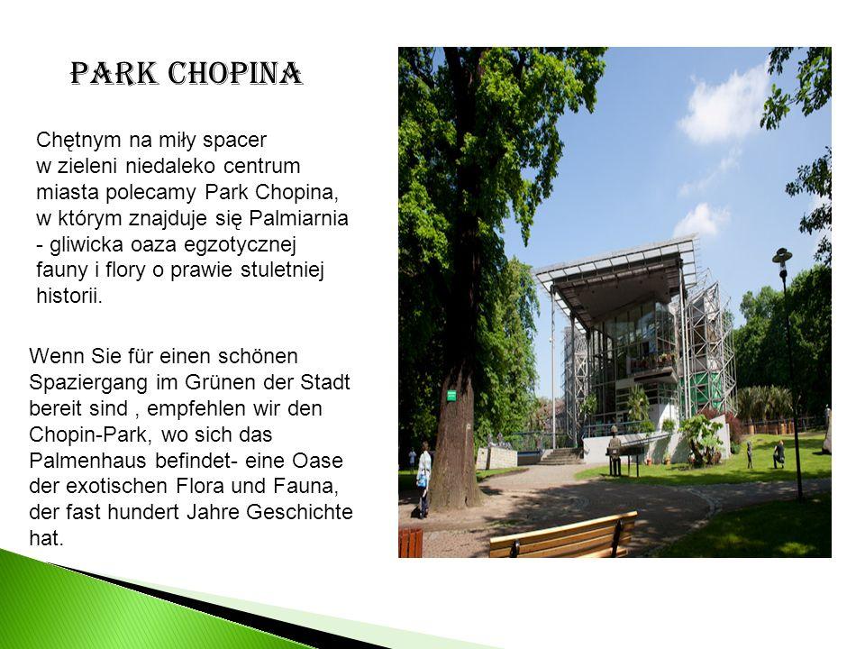 Chętnym na miły spacer w zieleni niedaleko centrum miasta polecamy Park Chopina, w którym znajduje się Palmiarnia - gliwicka oaza egzotycznej fauny i