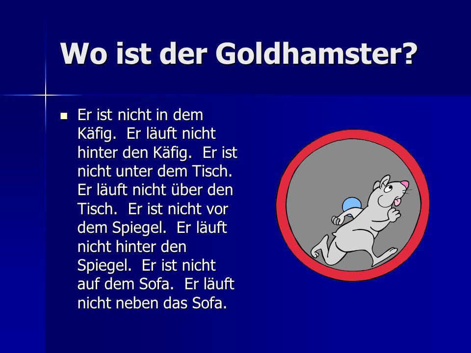 Die Schubert Familie Gestern hat Jörg sein Goldhamster verloren. Kannst du ihm helfen? Wir müssen den Goldhamster finden, aber wo ist er? Gestern hat