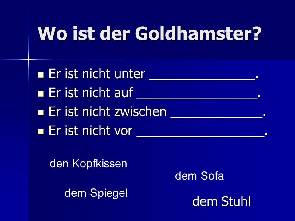 Wo ist der Goldhamster.Er ist nicht unter _______________.
