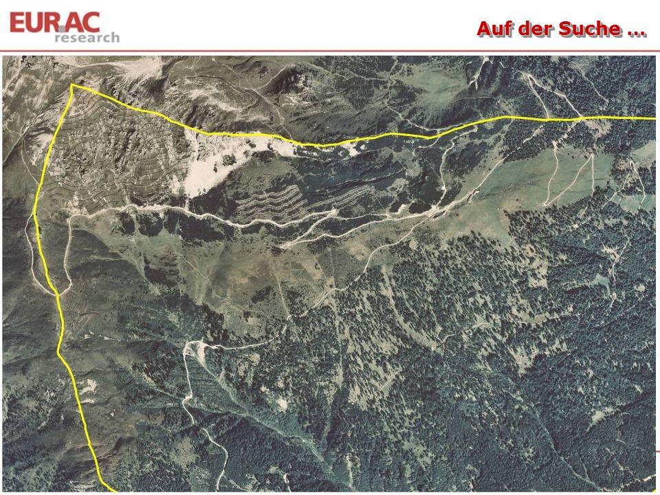 020100 50 40 30 20 10 0 Kumulative Wurzeldichte (km m -2 ) 60 O-Horizont A-,B- Horizont Bodentiefe (cm) Rotschwingel-Straußgraswiese Goldhaferwiese Ferkelkraut-Borstgraswiese Horstseggenhalde Wacholder-Bärentraubenheide Lärchwiese Subalpiner Fichtenwald Translationsbodenrutschungen … Tasser et al., 2005