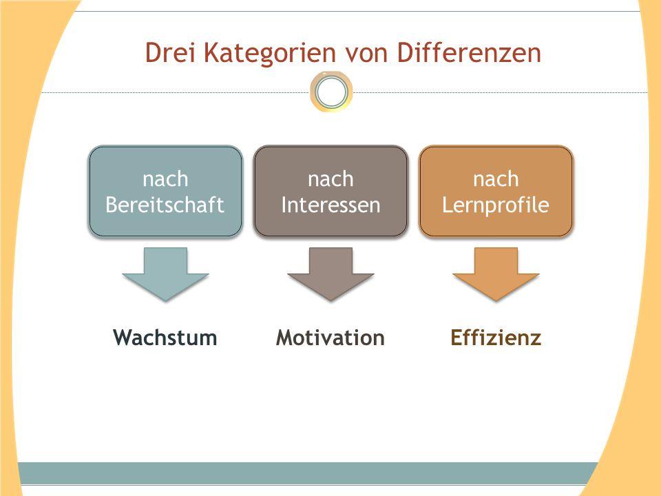 Drei Kategorien von Differenzen nach Bereitschaft nach Interessen nach Lernprofile WachstumMotivationEffizienz
