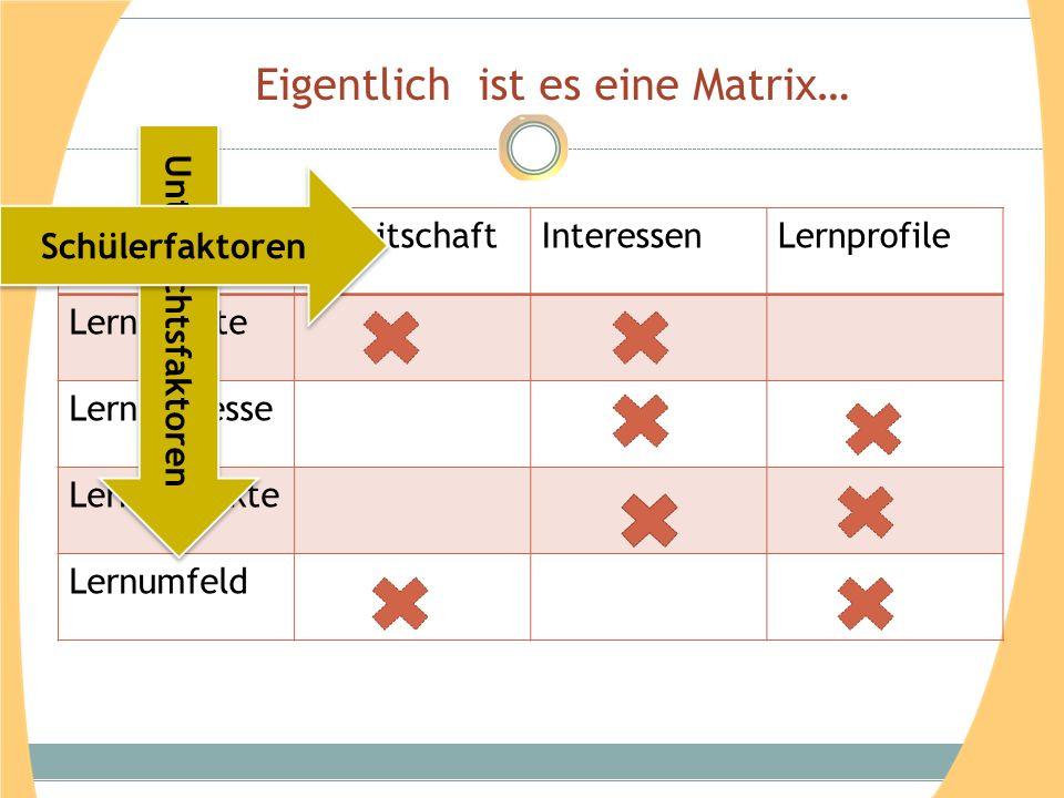 Eigentlich ist es eine Matrix… BereitschaftInteressenLernprofile Lerninhalte Lernprozesse Lernprodukte Lernumfeld Unterrichtsfaktoren Schülerfaktoren