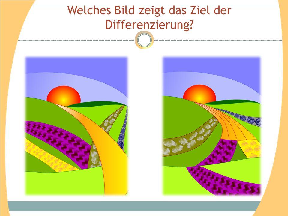 Welches Bild zeigt das Ziel der Differenzierung?