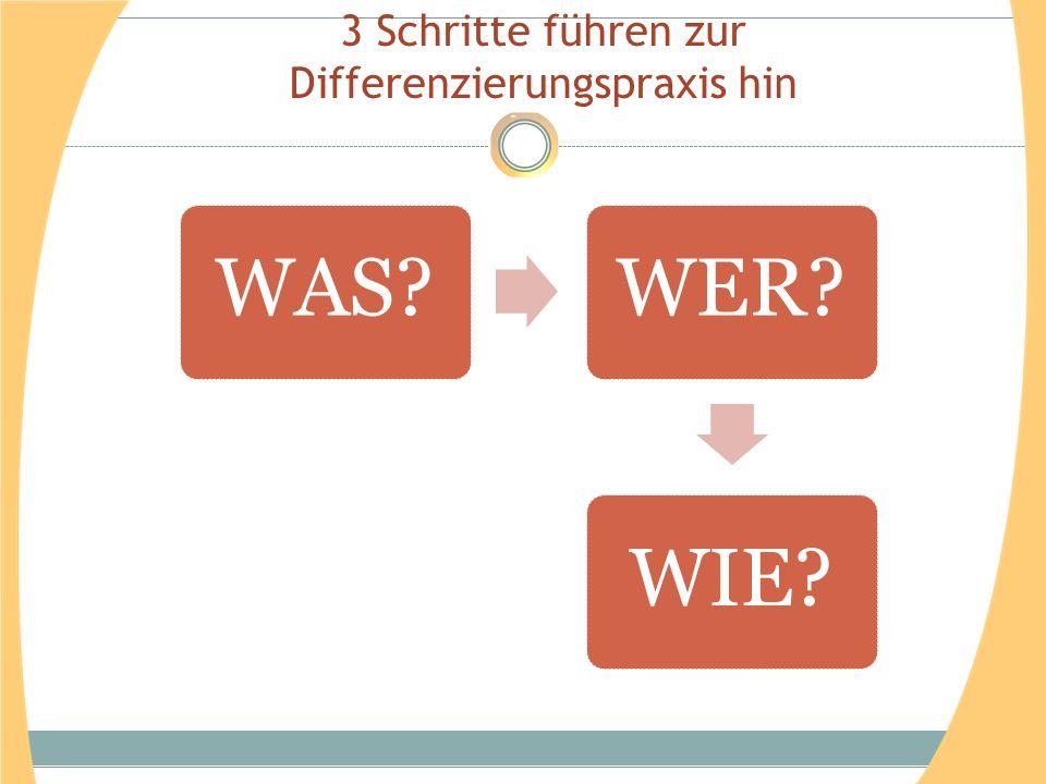 3 Schritte führen zur Differenzierungspraxis hin WAS?WER?WIE?