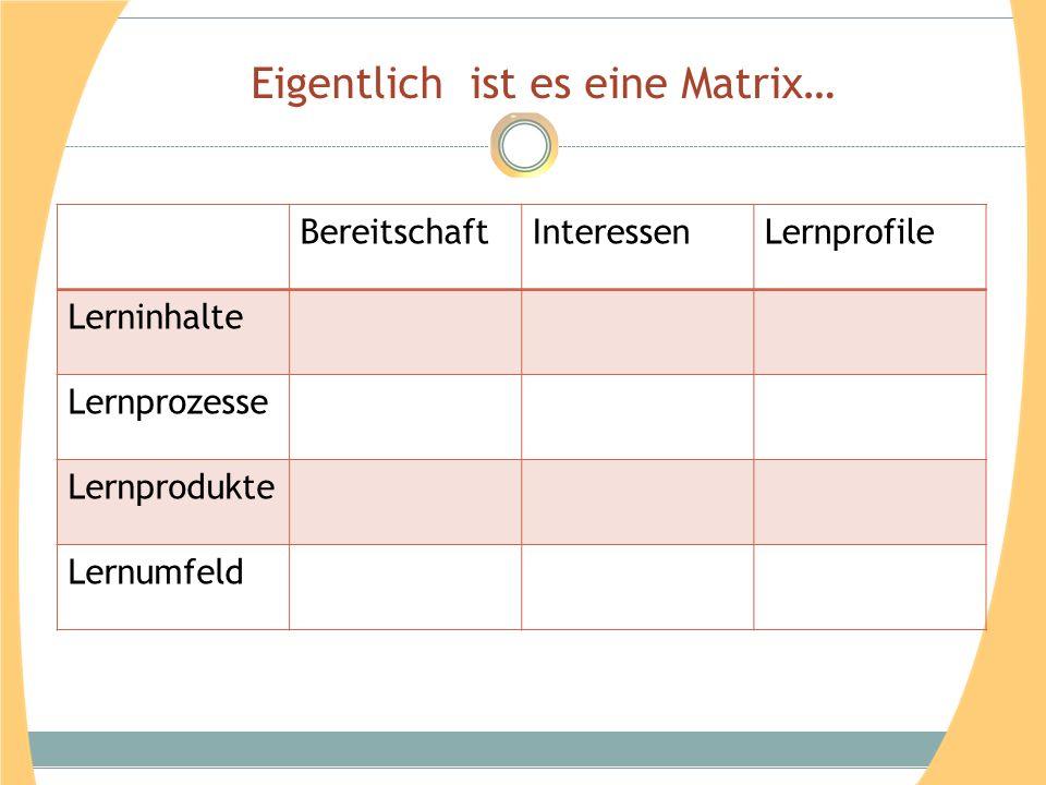 Eigentlich ist es eine Matrix… BereitschaftInteressenLernprofile Lerninhalte Lernprozesse Lernprodukte Lernumfeld