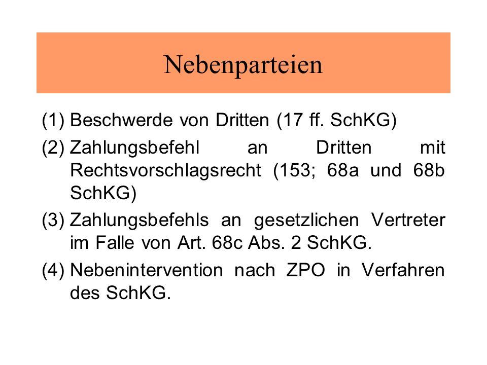 Nebenparteien (1)Beschwerde von Dritten (17 ff.