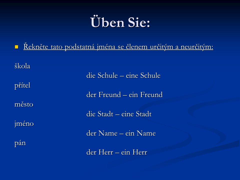 Üben Sie: Řekněte tato podstatná jména se členem určitým a neurčitým: Řekněte tato podstatná jména se členem určitým a neurčitým:škola die Schule – ei