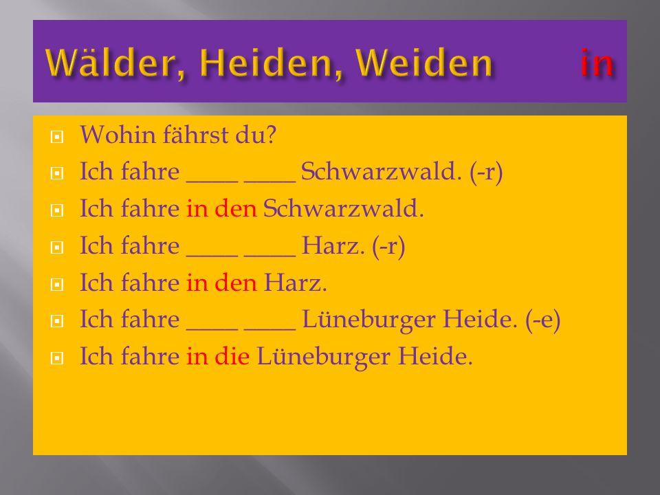 Wohin fährst du? Ich fahre ____ ____ Schwarzwald. (-r) Ich fahre in den Schwarzwald. Ich fahre ____ ____ Harz. (-r) Ich fahre in den Harz. Ich fahre _