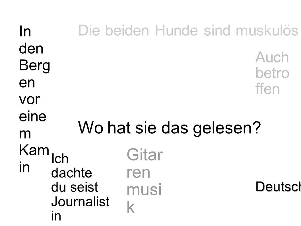 In den Berg en vor eine m Kam in Deutsch Auch betroff en Gitar ren musi k Die beiden Hunde sind muskulös Ich dachte du seist Journalistin