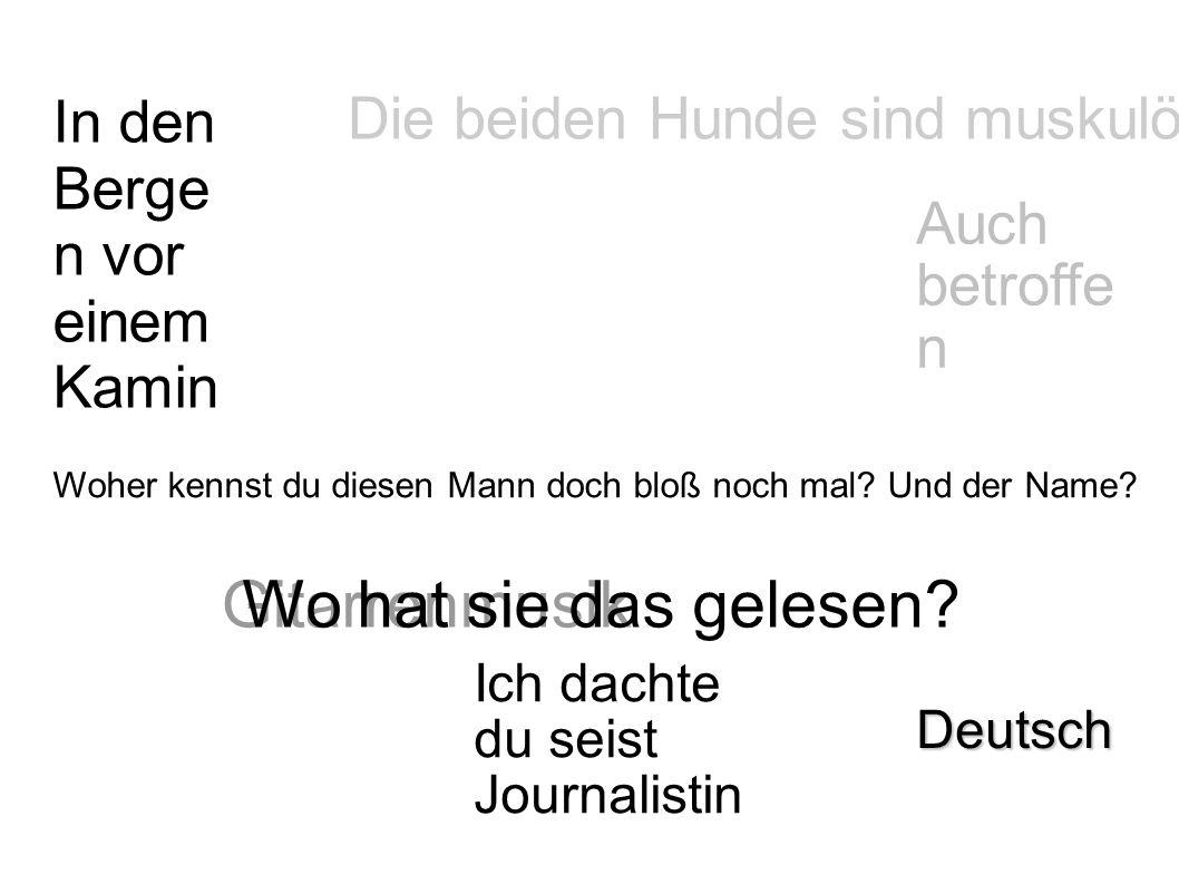 In den Berg en vor eine m Kam in Deutsch Auch betro ffen Gitar ren musi k Die beiden Hunde sind muskulös Ich dachte du seist Journalist in Wo hat sie das gelesen