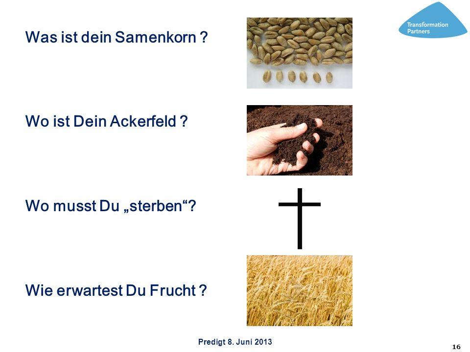 Predigt 8. Juni 2013 16 Was ist dein Samenkorn ? Wo ist Dein Ackerfeld ? Wo musst Du sterben? Wie erwartest Du Frucht ?