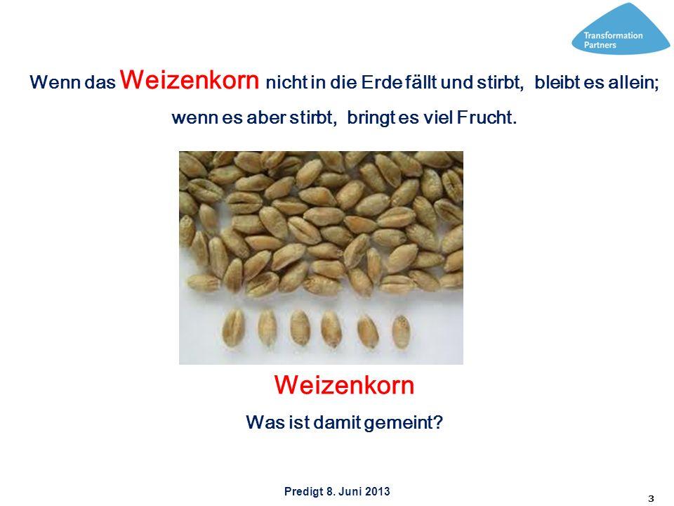 Predigt 8. Juni 2013 3 Wenn das Weizenkorn nicht in die Erde fällt und stirbt, bleibt es allein; wenn es aber stirbt, bringt es viel Frucht. Weizenkor