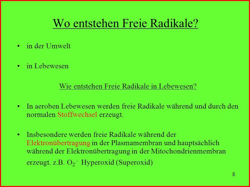5 Wo entstehen Freie Radikale? in der Umwelt in Lebewesen Wie entstehen Freie Radikale in Lebewesen? In aeroben Lebewesen werden freie Radikale währen