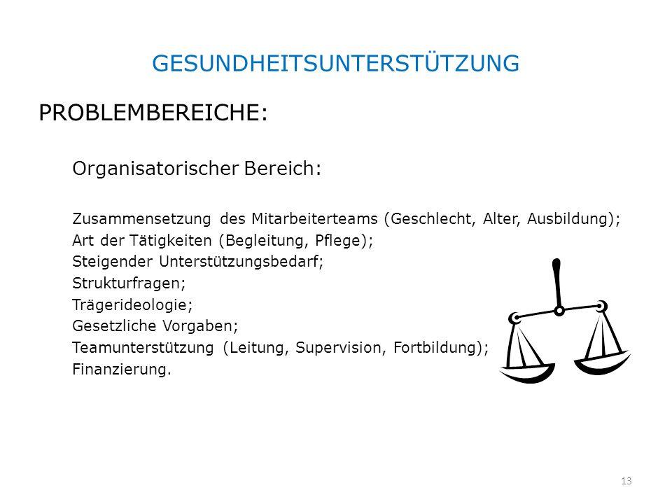 GESUNDHEITSUNTERSTÜTZUNG PROBLEMBEREICHE: Organisatorischer Bereich: Zusammensetzung des Mitarbeiterteams (Geschlecht, Alter, Ausbildung); Art der Tät