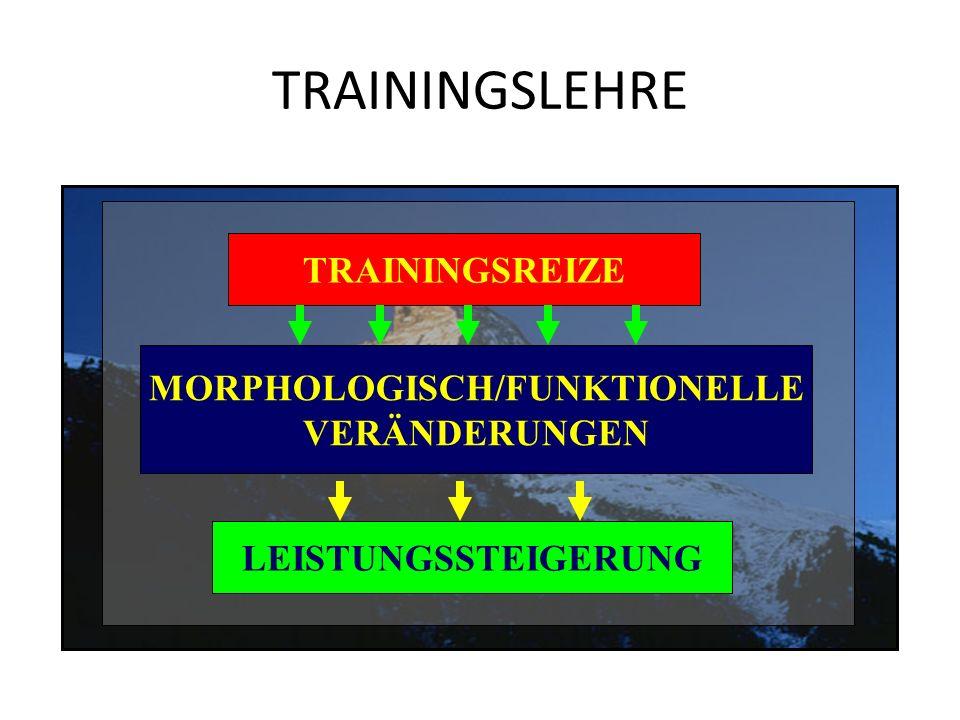 TRAININGSLEHRE TRAININGS- PRINZIPIEN