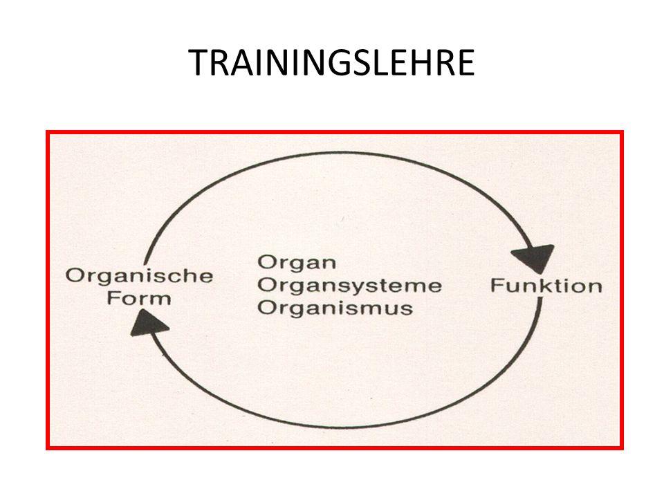 TRAININGSLEHRE PRINZIP DER OPTIMALEN RELATION BELASTUNG/ERHOLUNG