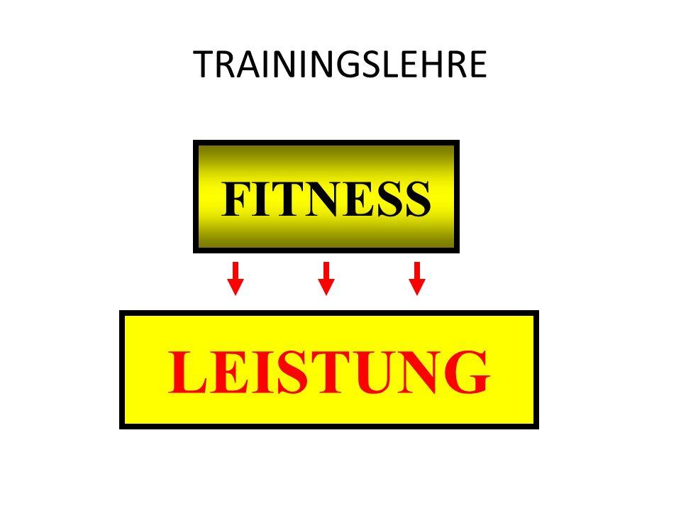 TRAININGSLEHRE STRESSAUSLÖSUNG ALARMREAKTION ADAPTATION