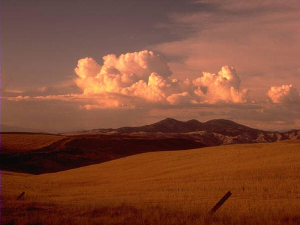 Wer nur in der Erde wühlt, wird den Himmel nie finden.