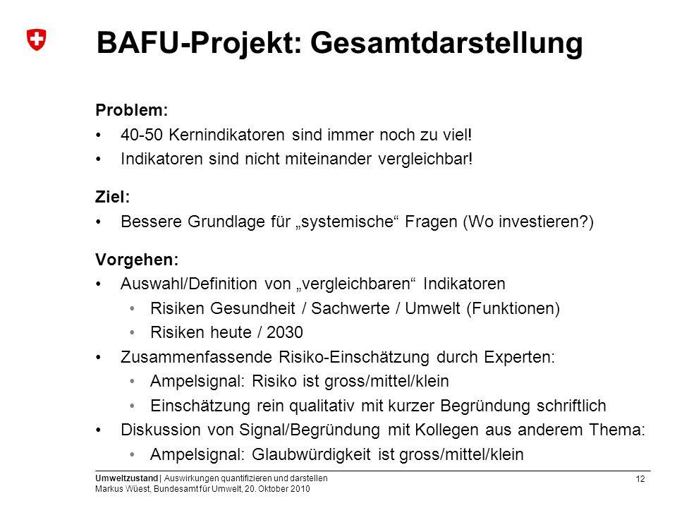 12 Umweltzustand | Auswirkungen quantifizieren und darstellen Markus Wüest, Bundesamt für Umwelt, 20. Oktober 2010 BAFU-Projekt: Gesamtdarstellung Pro