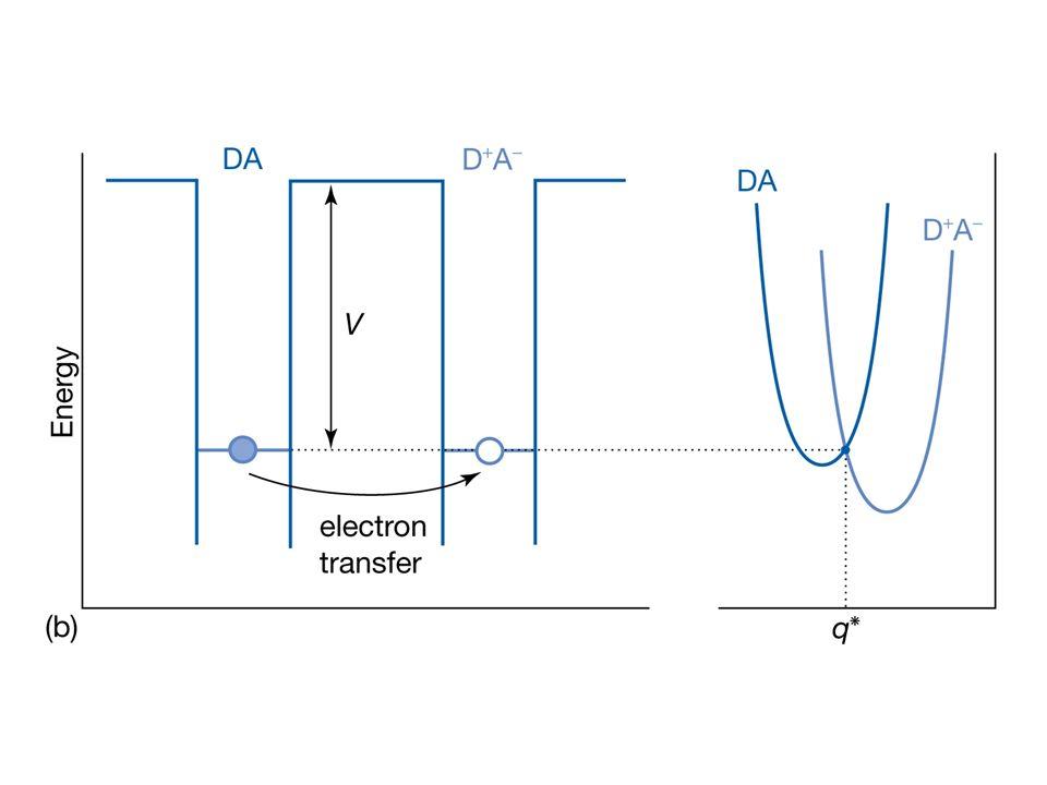 Galvanische Zelle: Spontane Redox Reaktion, Elektronen werden in die Anode eingespeist und der Kathode entnommen: Jetzt ist Anode negativ und Kathode positiv.