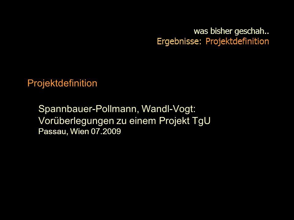 was bisher geschah.. Ergebnisse: Projektdefinition Projektdefinition Spannbauer-Pollmann, Wandl-Vogt: Vorüberlegungen zu einem Projekt TgU Passau, Wie