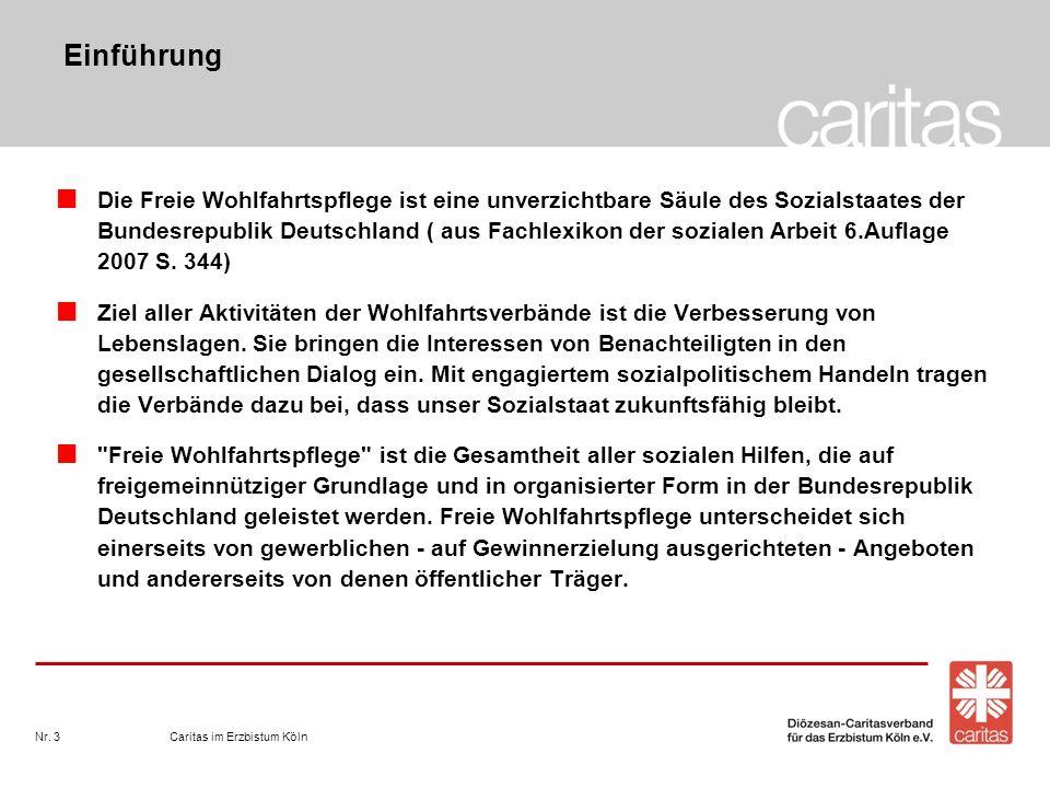 Einführung Die Freie Wohlfahrtspflege ist eine unverzichtbare Säule des Sozialstaates der Bundesrepublik Deutschland ( aus Fachlexikon der sozialen Ar
