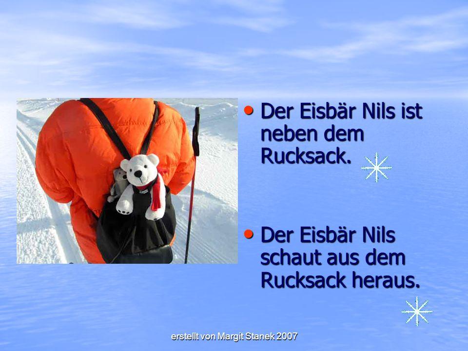 Der Eisbär Nils ist neben dem Rucksack.Der Eisbär Nils ist neben dem Rucksack.