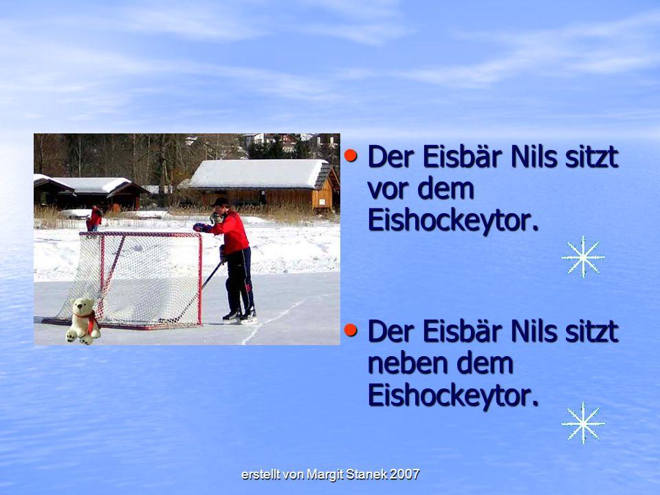 Der Eisbär Nils sitzt vor dem Eishockeytor.Der Eisbär Nils sitzt vor dem Eishockeytor.