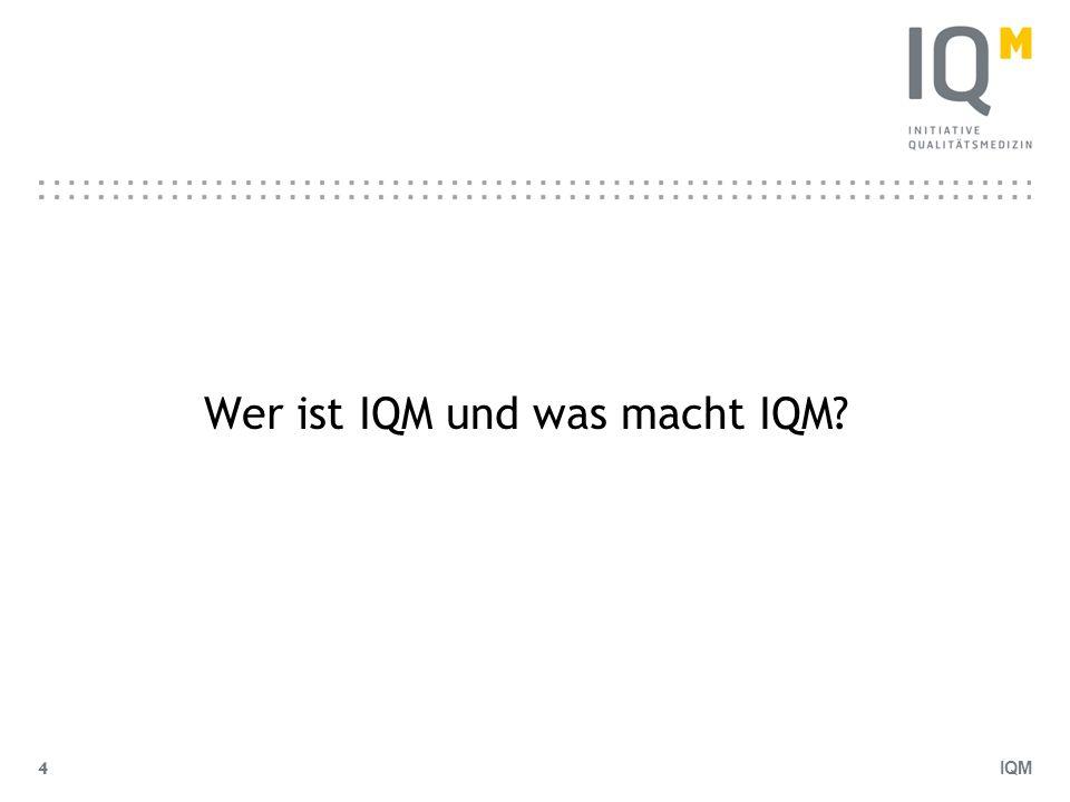 IQM 5 Wer ist IQM.