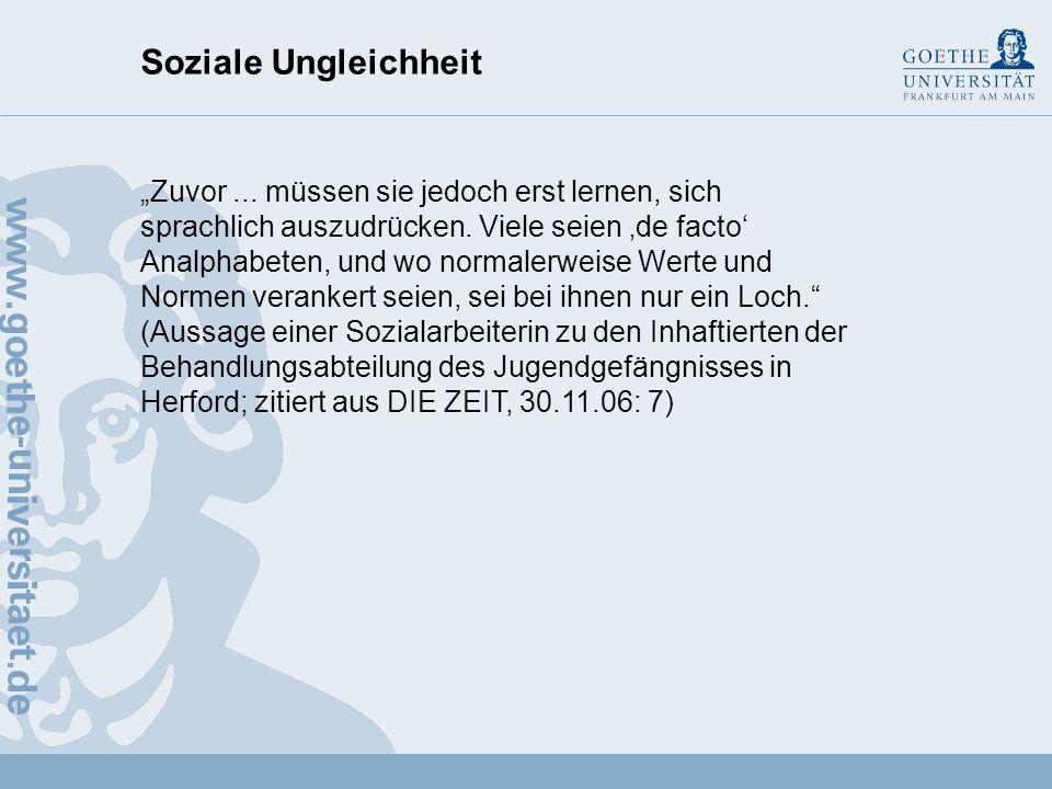 Soziale Ungleichheit Soziale Arbeitsteilung – funktionale Differenzierung Soziale Schichtung – skalare Differenzierung Vgl.