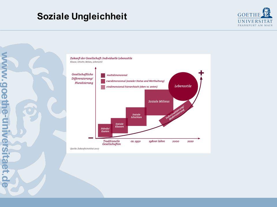 Soziale Ungleichheit Soziale Lage (objektiv) – Handlungsbedingungen Soziales Milieu (objektiv–subjektiv) – Handlungsmittel (Sub)Kultur (latent subjekt