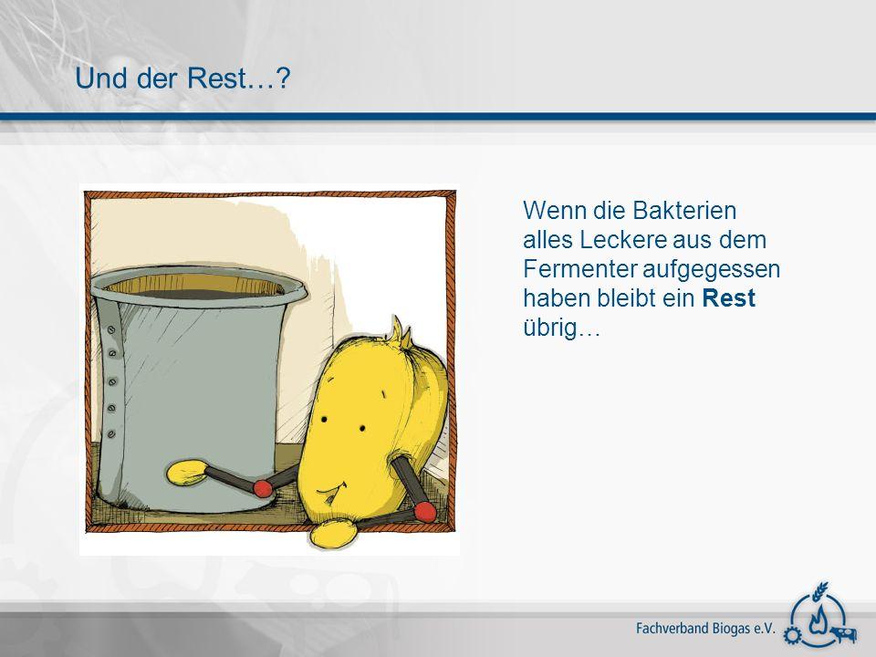 Wenn die Bakterien alles Leckere aus dem Fermenter aufgegessen haben bleibt ein Rest übrig… Und der Rest…?