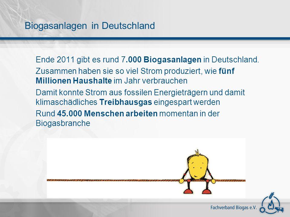 Ende 2011 gibt es rund 7.000 Biogasanlagen in Deutschland. Zusammen haben sie so viel Strom produziert, wie fünf Millionen Haushalte im Jahr verbrauch