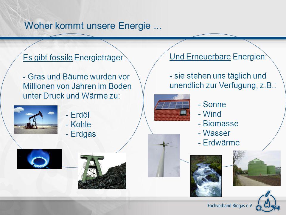 Fachverband Biogas Angerbrunnenstr.