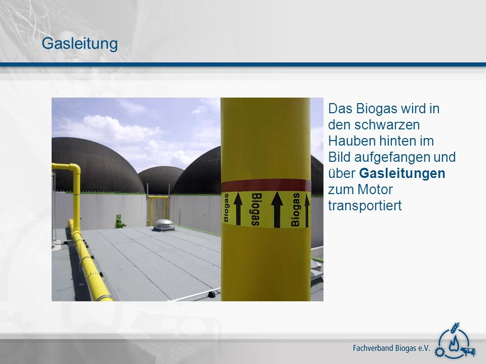 Gasleitung Das Biogas wird in den schwarzen Hauben hinten im Bild aufgefangen und über Gasleitungen zum Motor transportiert