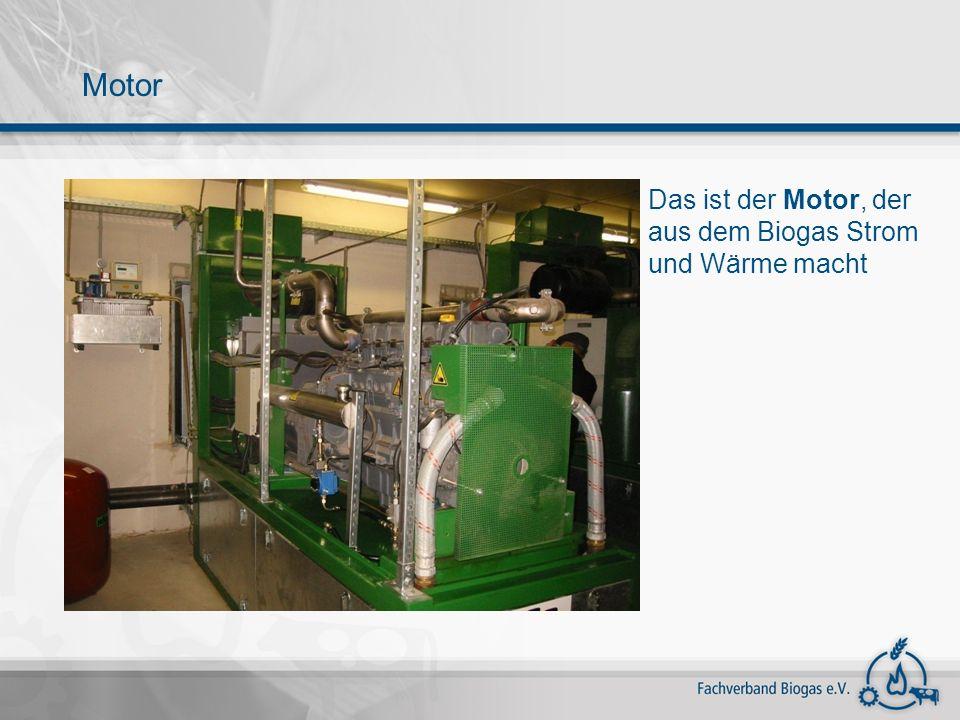Motor Das ist der Motor, der aus dem Biogas Strom und Wärme macht