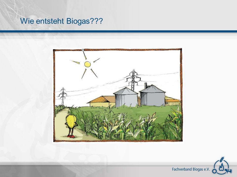 Wie entsteht Biogas???
