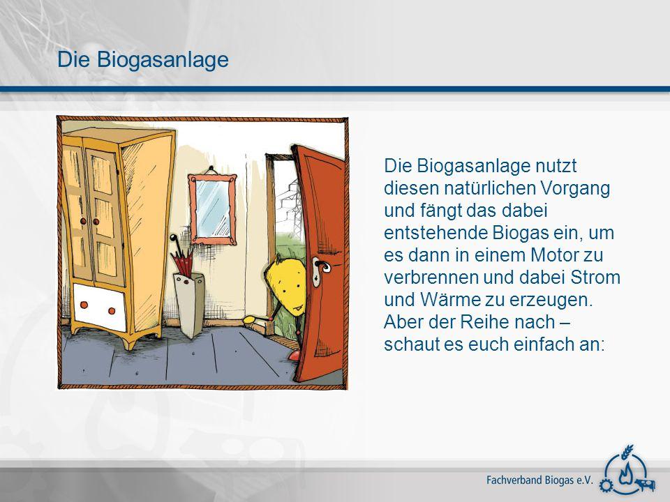 Die Biogasanlage Die Biogasanlage nutzt diesen natürlichen Vorgang und fängt das dabei entstehende Biogas ein, um es dann in einem Motor zu verbrennen