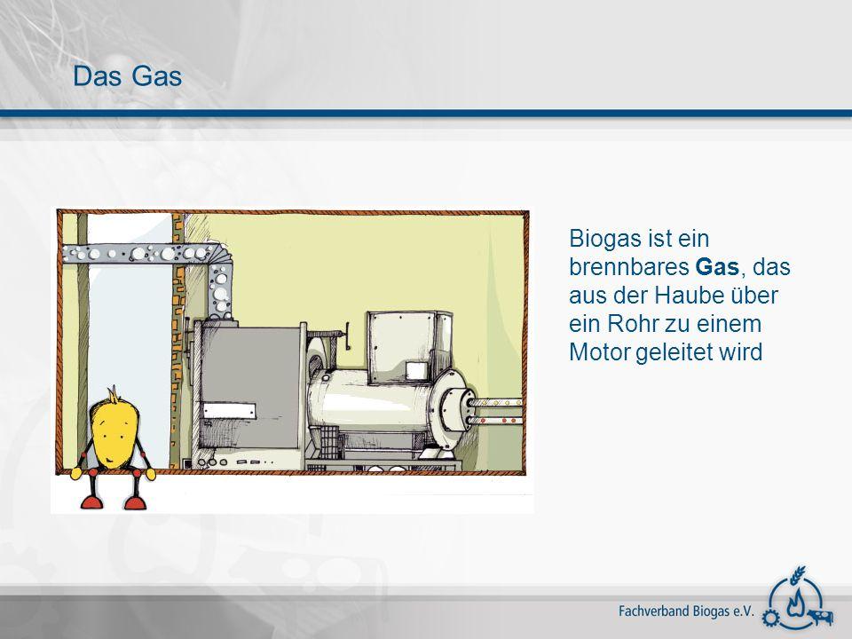 Gärsubstrat Und so sieht das Gemisch aus Gülle, Energiepflanzen und Bioabfällen in Wirklichkeit aus – die Bläschen sind das Biogas