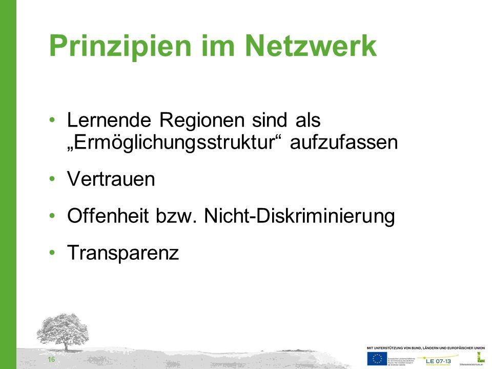 17 Strategieentwicklung Netzwerk / Lead-Partner bestimmt Ablauf z.B.
