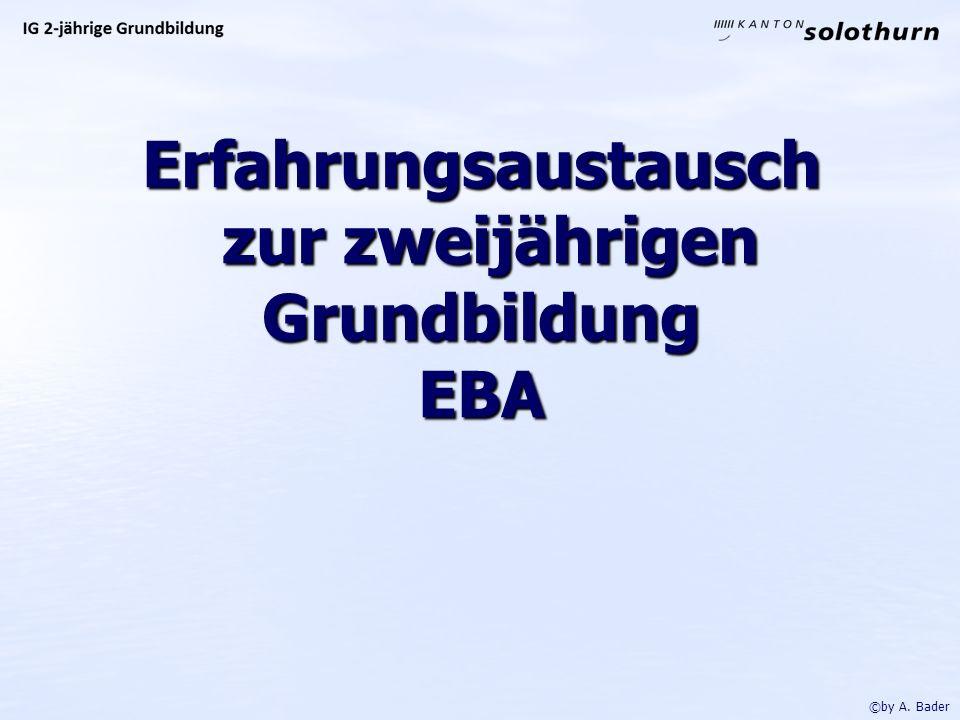 Erfahrungsaustausch zur zweijährigen Grundbildung EBA ©by A. Bader