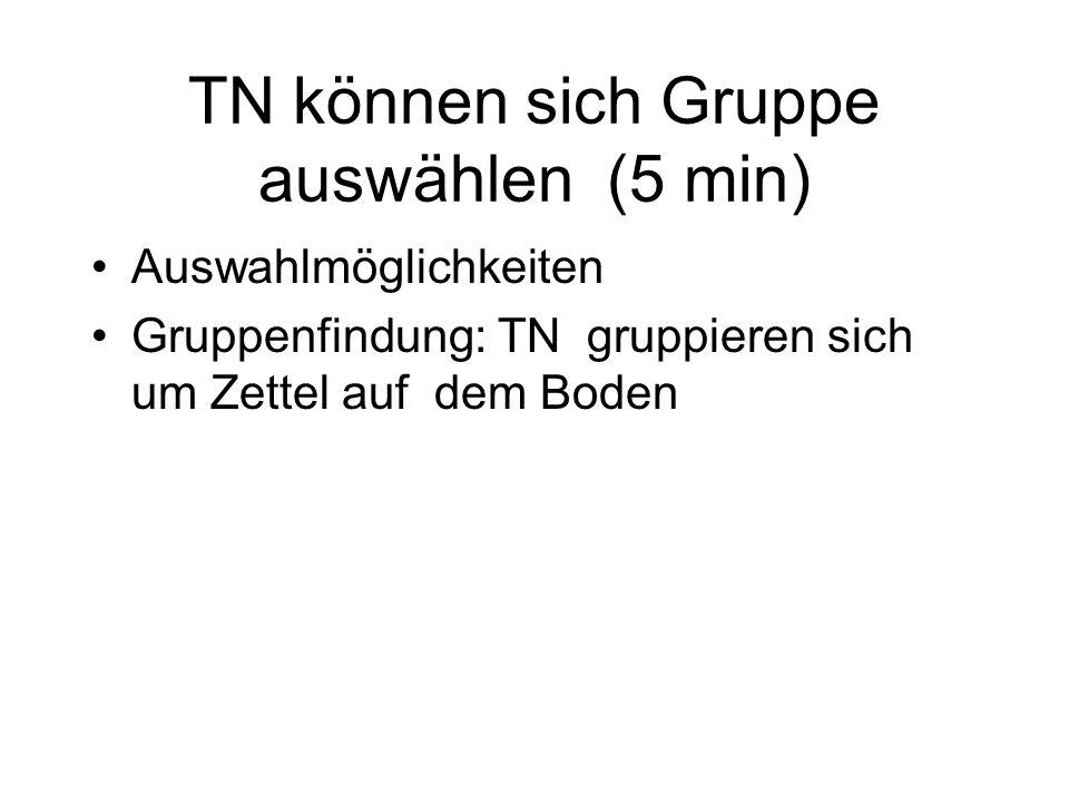 TN können sich Gruppe auswählen (5 min) Auswahlmöglichkeiten Gruppenfindung: TN gruppieren sich um Zettel auf dem Boden