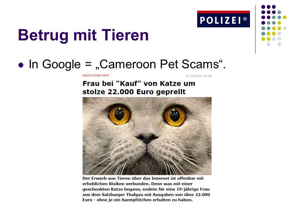 Betrug mit Tieren In Google = Cameroon Pet Scams.